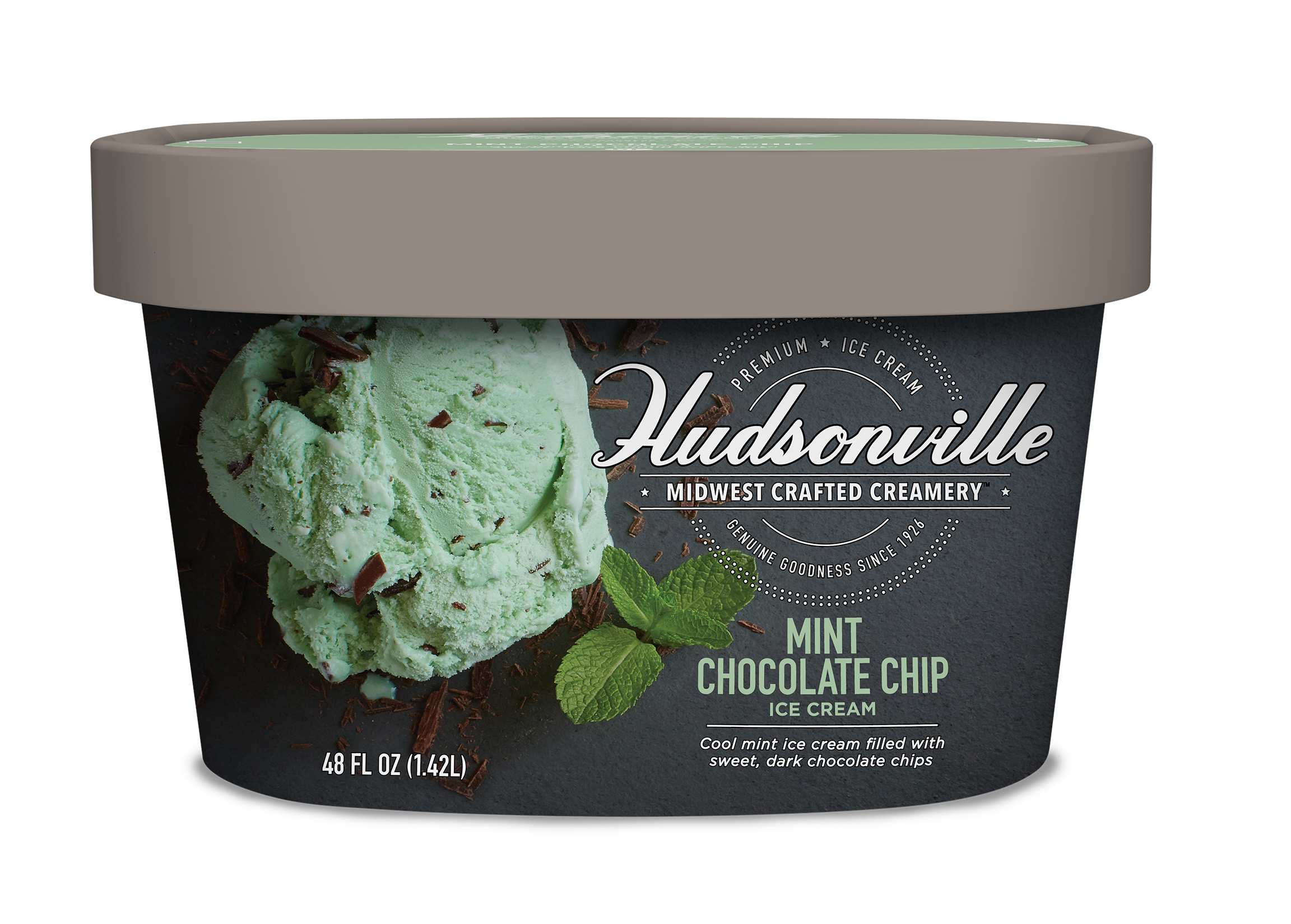 MINT CHOCOLATE CHIP Carton